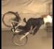 Oro pagalvė dviratininkams!