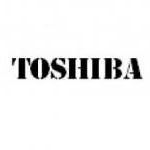 TOSHIBA infraraudonųjų spindulių lempų charakteristikos